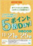 5倍ポイントDAY 11/21(水)~25(日)