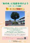 「あの木」に名前を付けよう~ネーミング企画~ ニックネーム募集中!