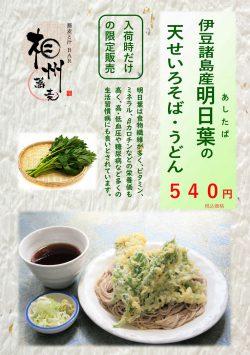 相州蕎麦:季節のおすすめ蕎麦 明日葉の天せいろそば・うどん